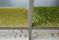 Kunstraum Lakeside, Lakeside Park Ausstellung   Anmerkungen zu Landschaft, Hangar Barcelona Foto: Johannes Puch http://www.johannespuch.at